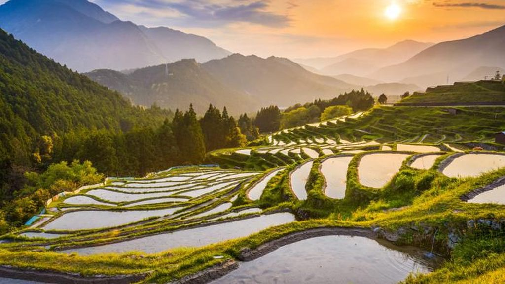 Potret Tempat Para Dewa, Destinasi Ciamik di Jepang