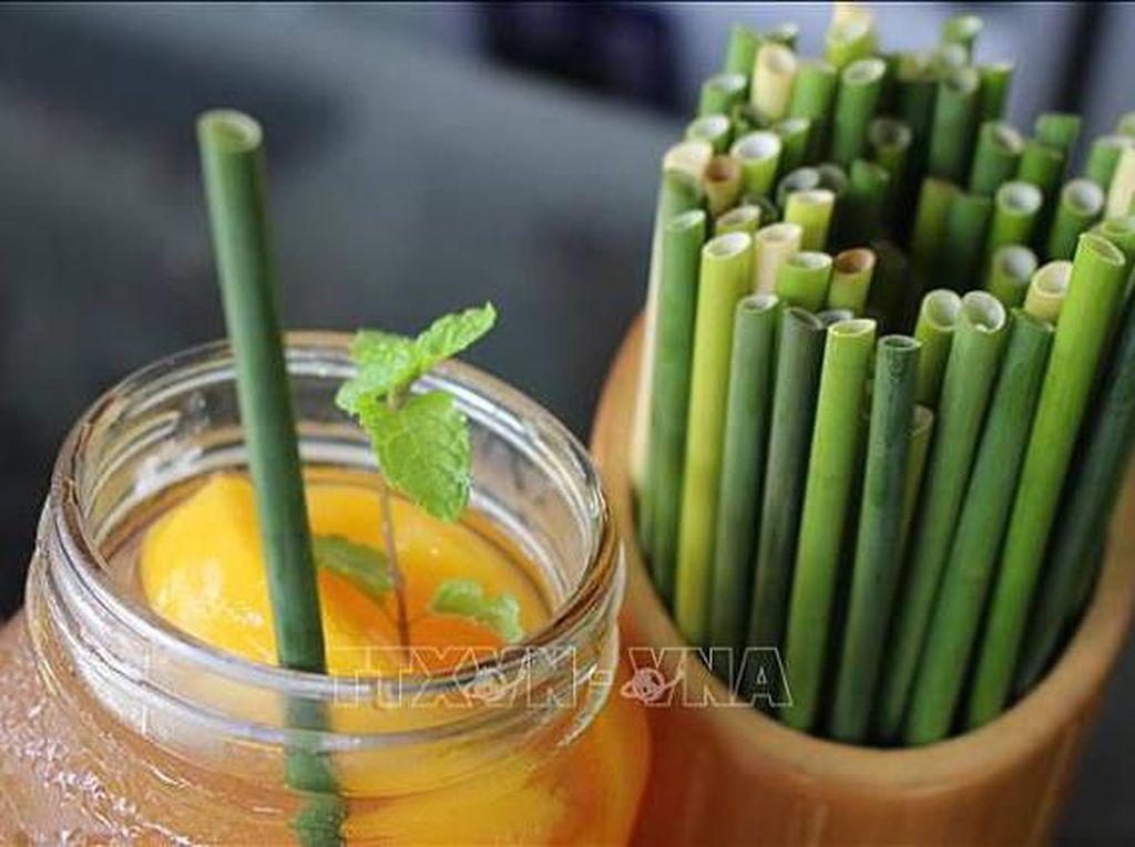 Selain Bambu, Kini Batang Rumput Diolah Jadi Sedotan Ramah Lingkungan