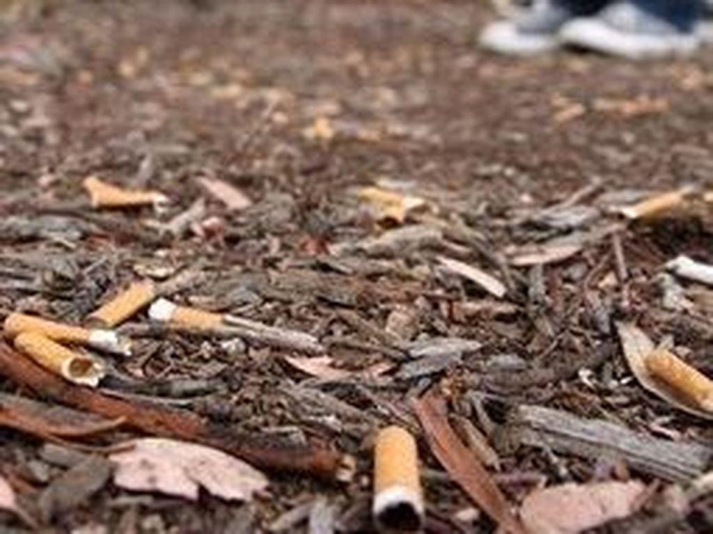 Buang Puntung Rokok dari Mobil di NSW Kini Bisa Didenda Hingga Rp 106 Juta