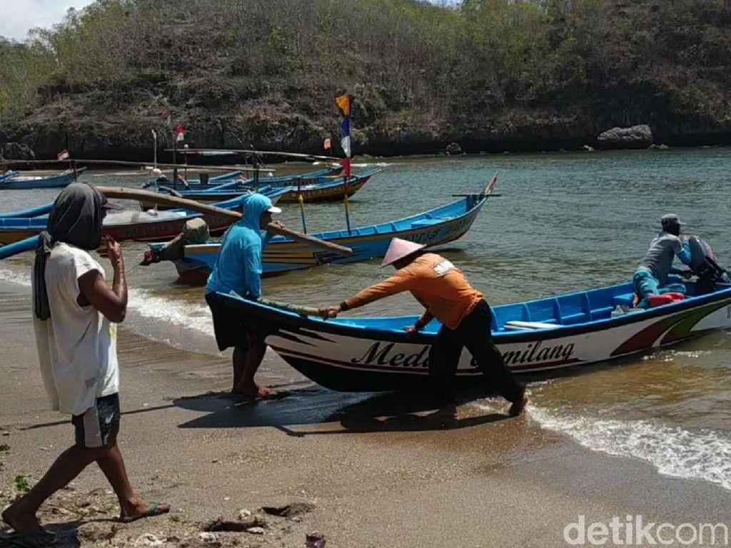 Kata Nelayan Pacitan Wacana Ekspor Baby Lobster