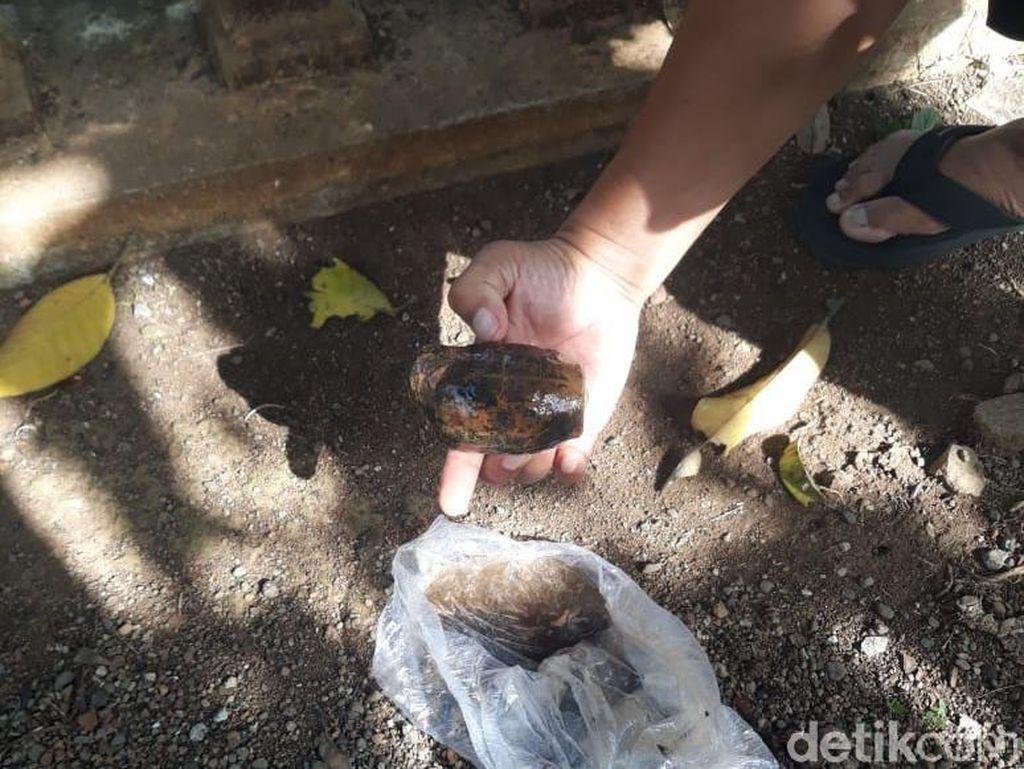 Pemulung Temukan Granat, Polisi Banyuwangi Turun Tangan