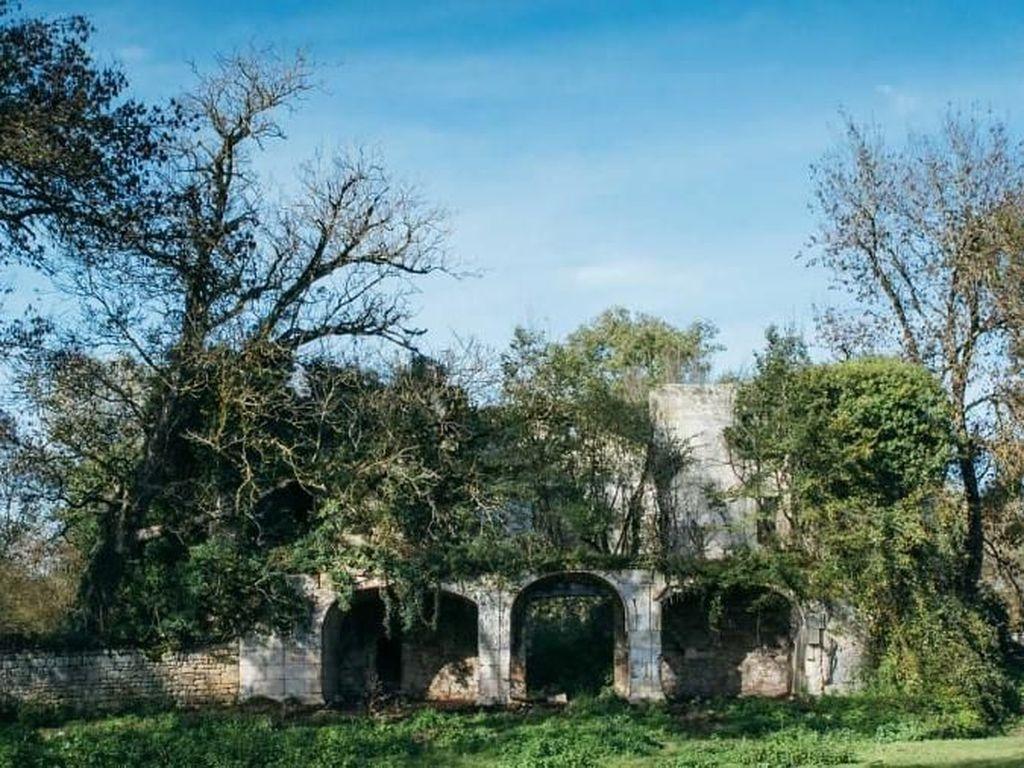Kastil Prancis Dijual Hanya Seharga Rp 800 Ribuan