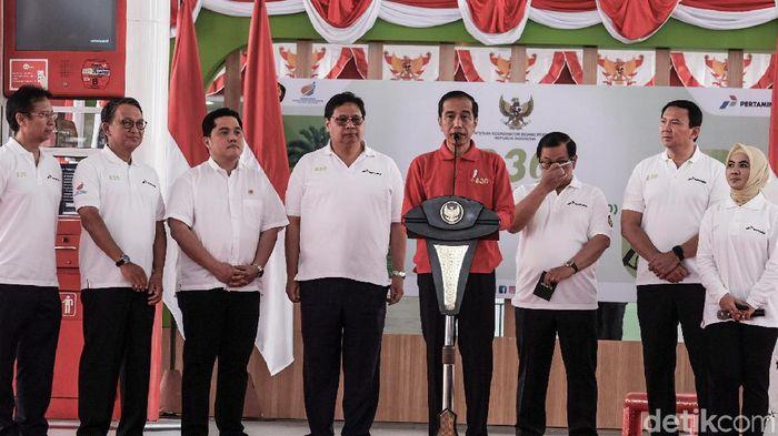 Mantul! RI Jadi Negara Pertama yang Terapkan B30/Foto: Andhika Prasetia/detikcom