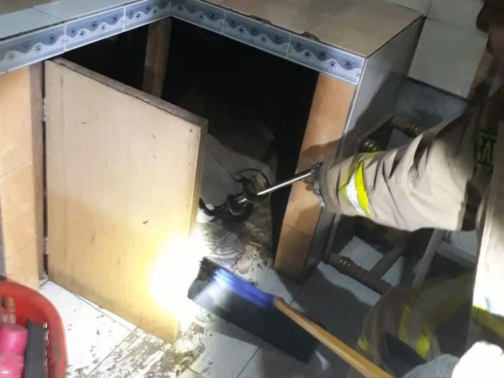 Damkar Tangkap Kobra 1 Meter yang Masuk ke Dapur Warga Cipayung
