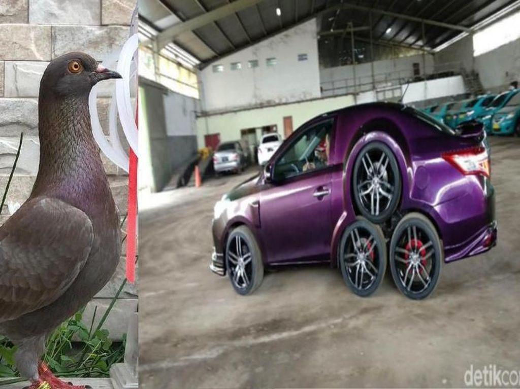 Kaleidoskop 2019: Heboh Merpati Seharga Rp 1 Miliar dan Mobil Roda 8