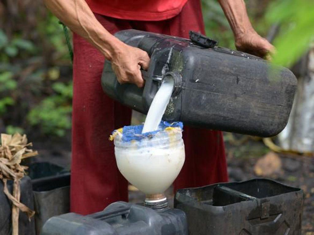Minum Arak Kelapa Saat Rayakan Natal, 300 Orang di Filipina Dirawat