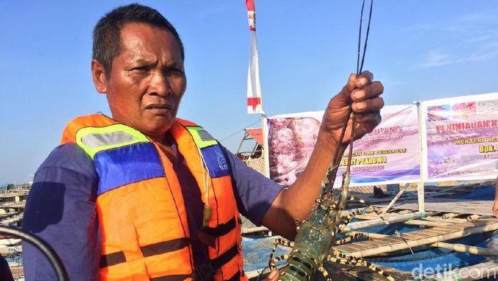 Di Depan Edhy Prabowo, Nelayan Kecam Rencana Ekspor Benih Lobster/Foto: Vadhia Lidyana/detikcom