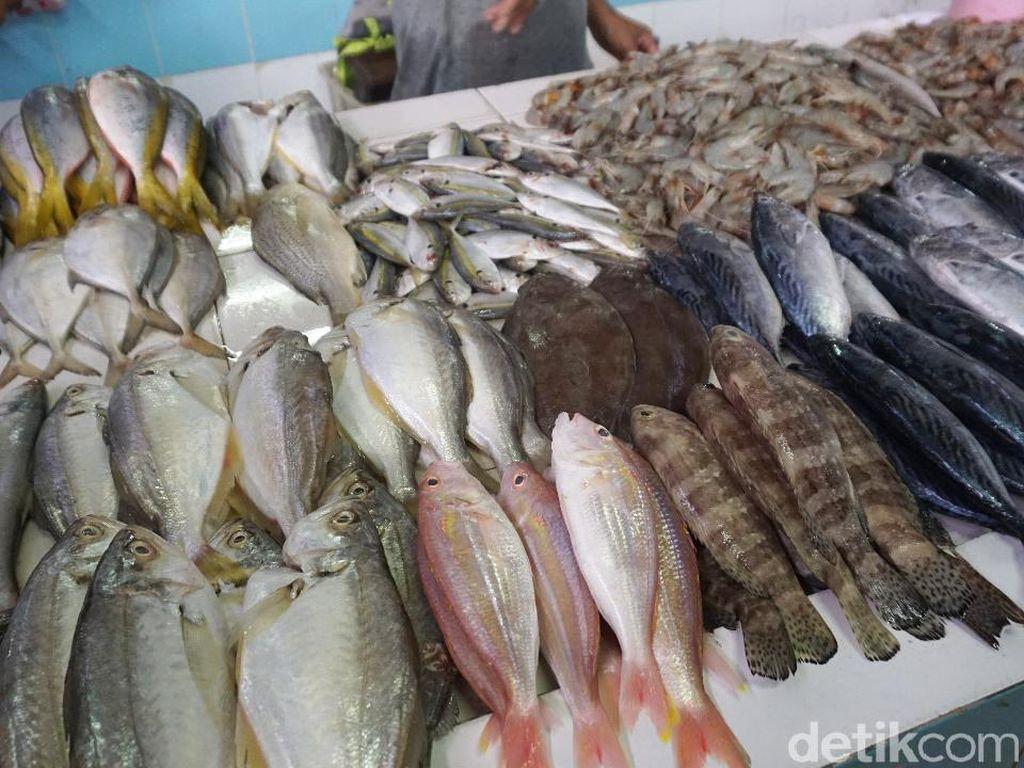 Tips Memilih Ikan Segar untuk Bakar-bakaran di Malam Tahun Baru