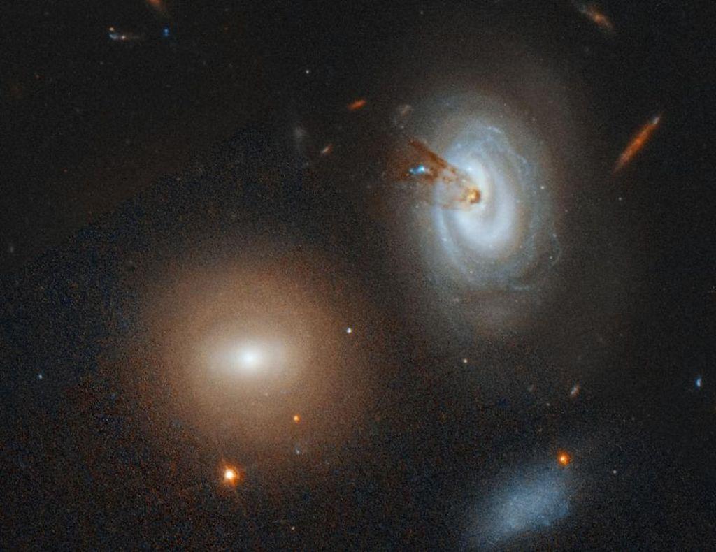 Galaxy D100. Galaksi paling kanan yang terekam Hubble sedang melaju kencang melalui Coma Cluster. Siluet dan debu belang aktif yang ditampilkannya membentuk bintang-bintang baru. Foto: NASA, ESA, M. Sun (University of Alabama), W. Cramer, J. Kenney (Yale Unibersity).