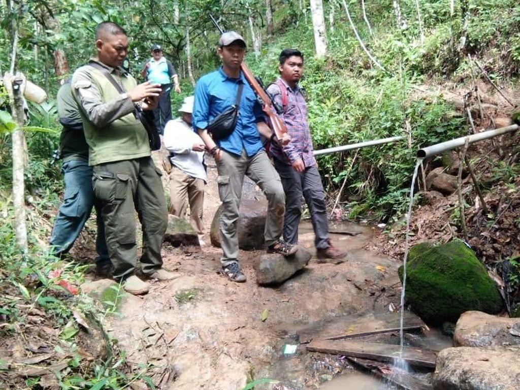 BKSDA Sumsel Temukan Banyak Jejak di Lokasi Sulis Tewas Diterkam Harimau