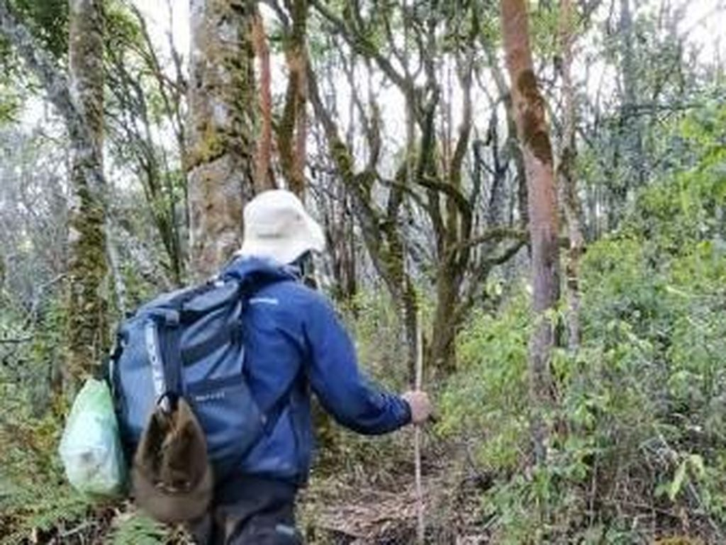 Foto: Mendaki Gunung Arjuno yang Katanya Angker