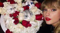 Berperan dalam Film Cats, Taylor Swift Punya Banyak Momen Kulineran Unik