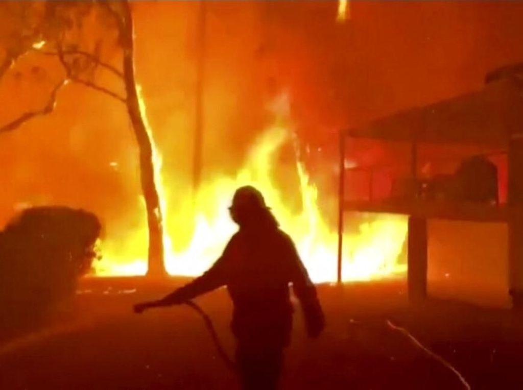 Ribuan Turis Terancam Terjebak Bencana Kebakaran di Australia