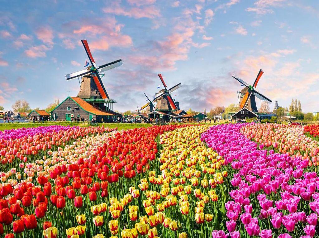 Belanda Bukan Lagi Holland