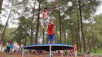 [CoC Regional: Lokasi Wisata] Objek Wisata Baru Banyumas, Hutan Pinus Limpakuwus