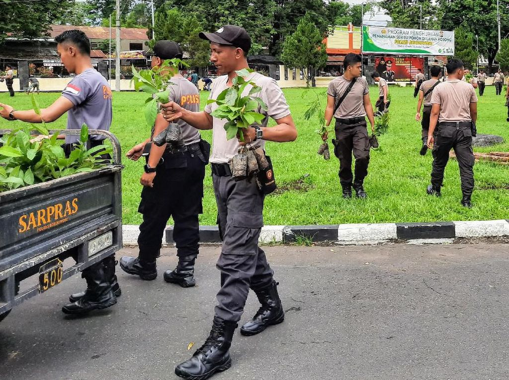 Cegah Longsor di Bondowoso, Ribuan Tanaman Ditanam di Lahan Kritis
