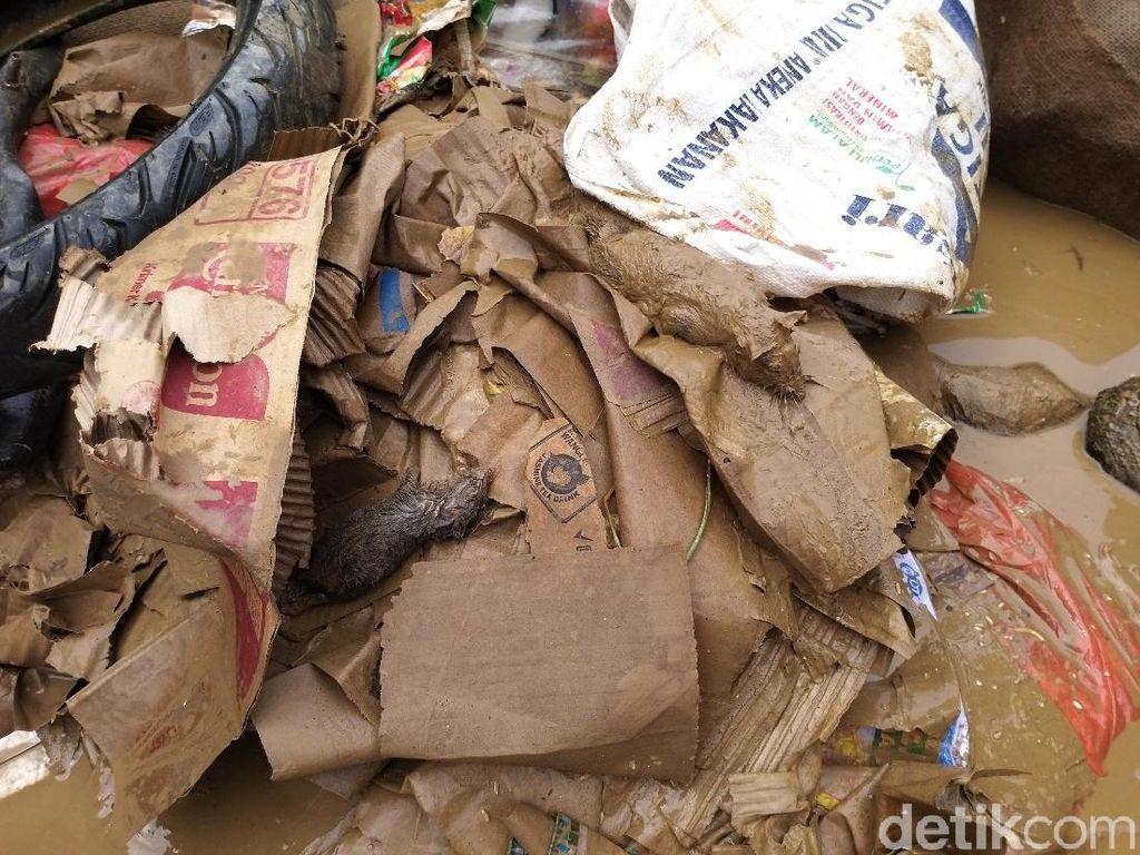 Banjir Mulai Surut, Menkes Terawan Fokus Antisipasi Penyakit Kencing Tikus