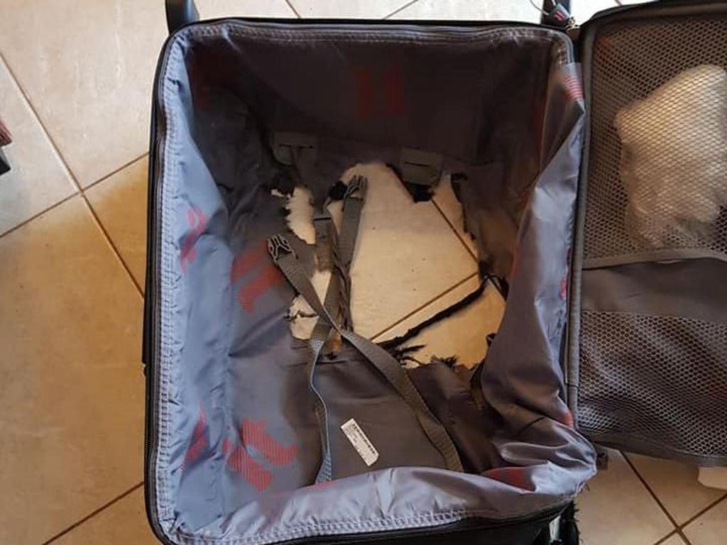 Koper Rusak Parah, Penumpang Pesawat Tuntut Ganti Rugi