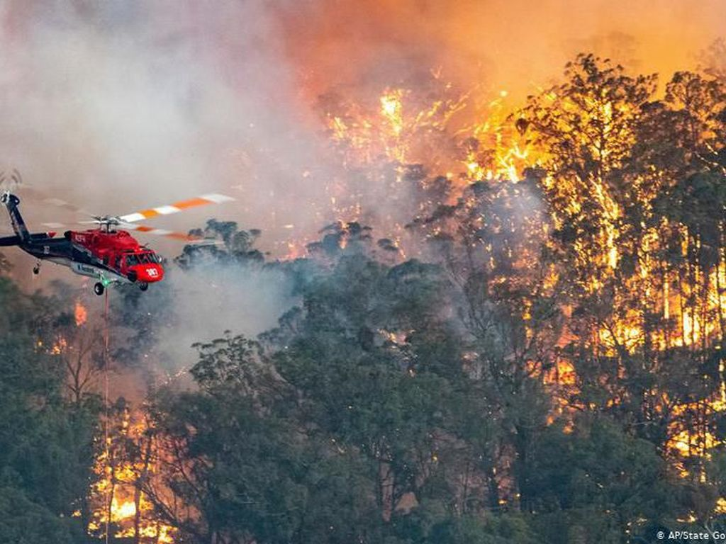 Kebakaran Hutan Australia, Masyarakat Kecewa dengan PM Morrison