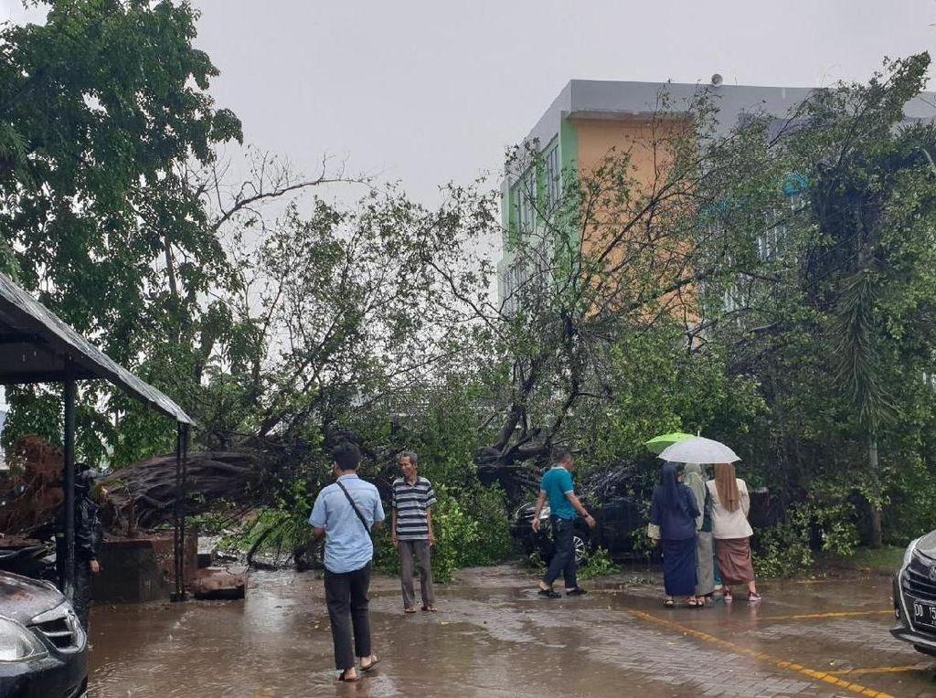 Pohon Beringin Tumbang Timpa 2 Mobil di RSUD Haji Makassar