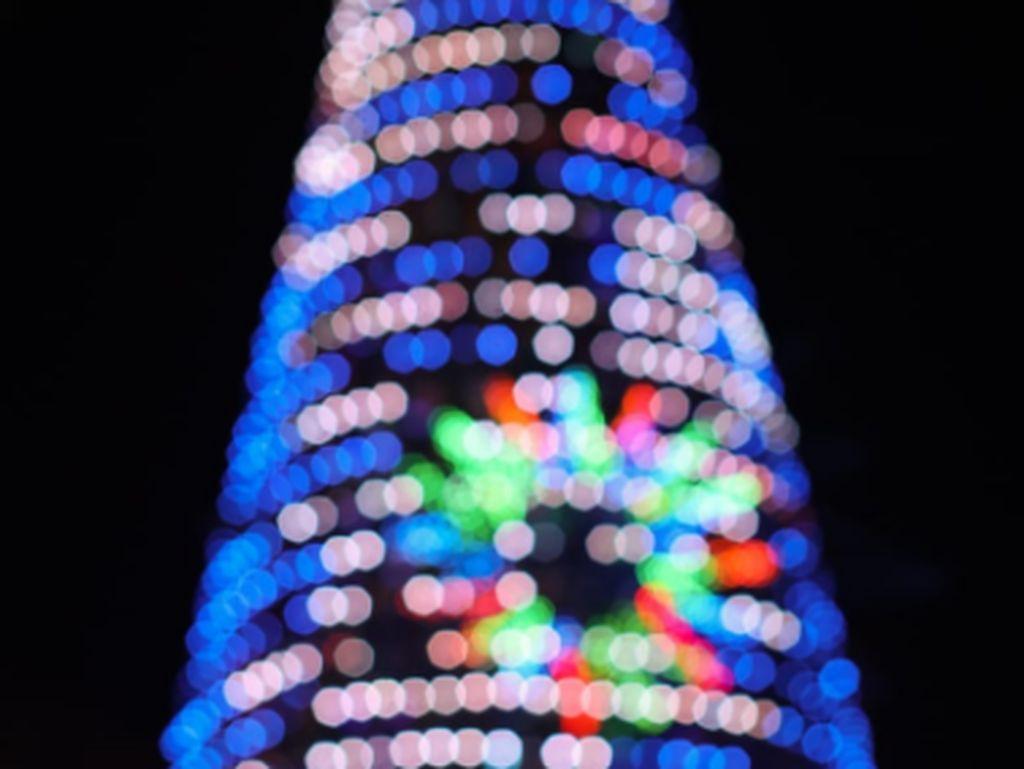 Bayang-bayang Pohon Natal