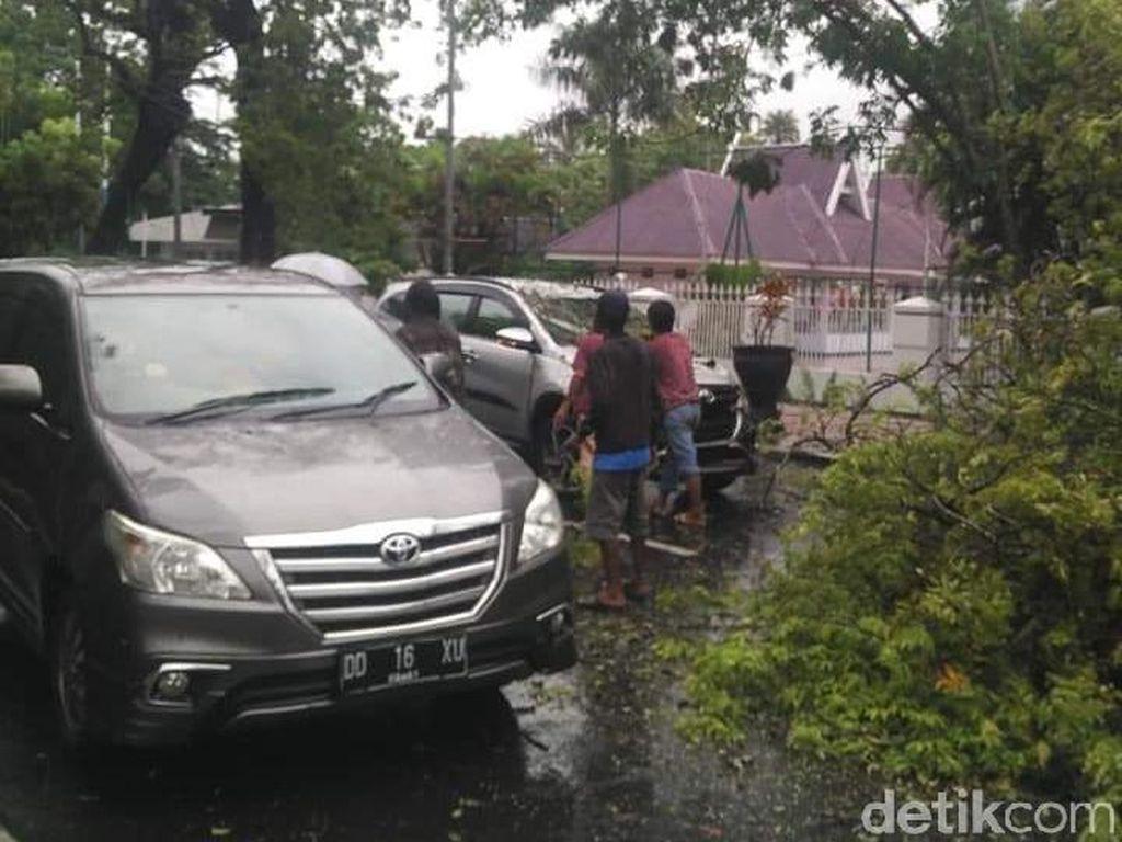 Pohon di Samping Rujab Gubernur Sulsel Tumbang Timpa Mobil