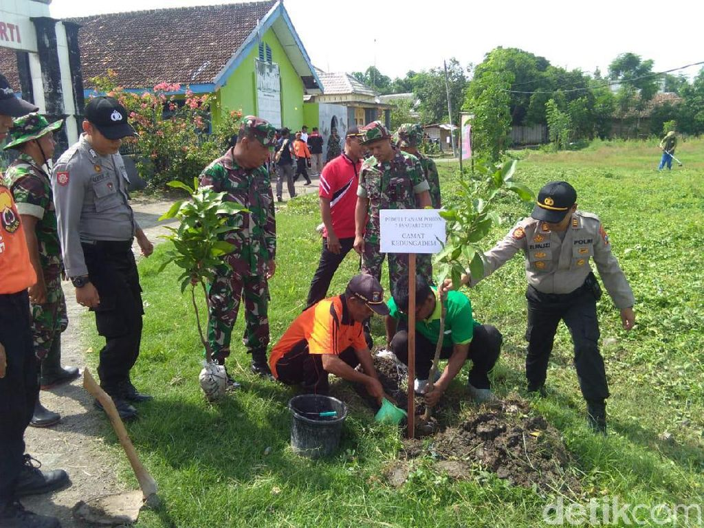 2.000 Pohon Ditanam di Lokasi Rawan Banjir Bojonegoro