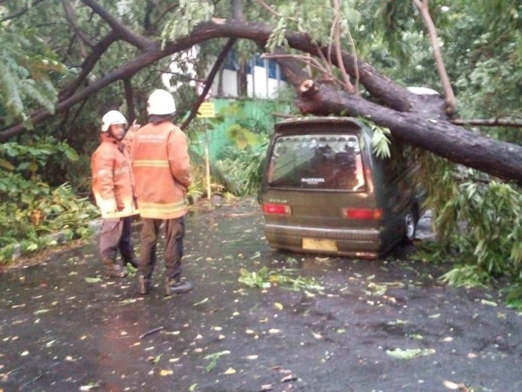 Hujan Disertai Angin Kencang di Surabaya, Banyak Pohon Bertumbangan