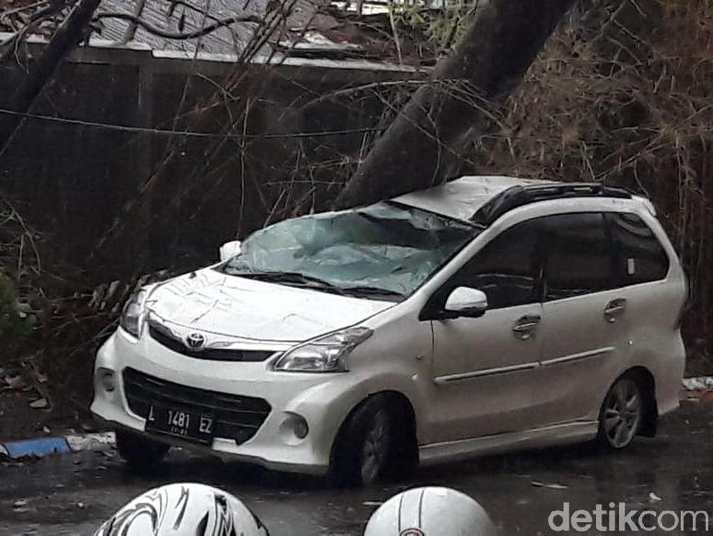 Pohon Tumbang Timpa Mobil Saat Hujan Disertai Angin Kencang di Surabaya