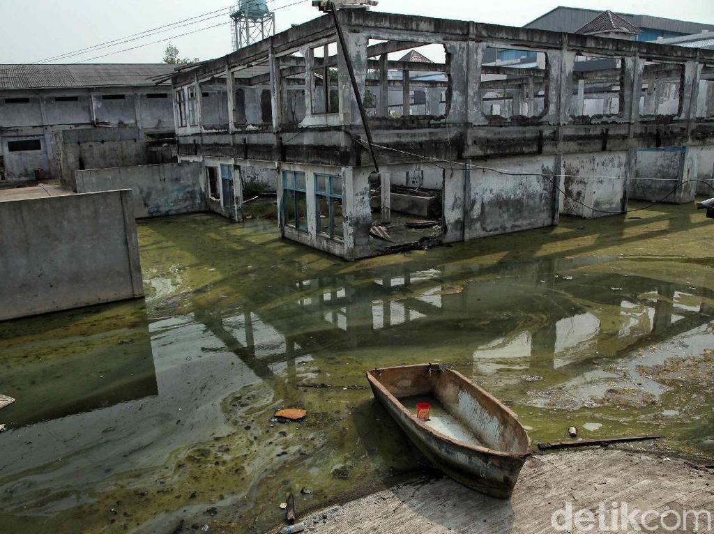 Pemprov DKI Sebut 7 Wilayah Jakut Berpotensi Terkena Banjir Rob