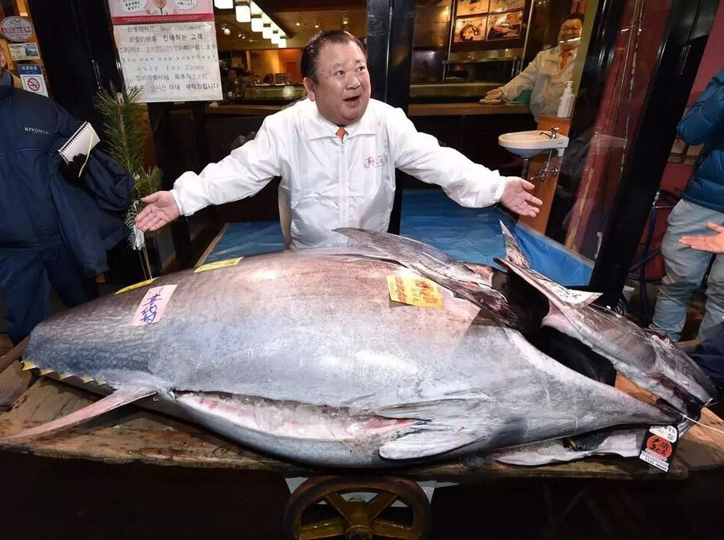 Lelang Tahun Baru, Tuna Jepang 276 Kg Ini Terjual Rp 24 Miliar!