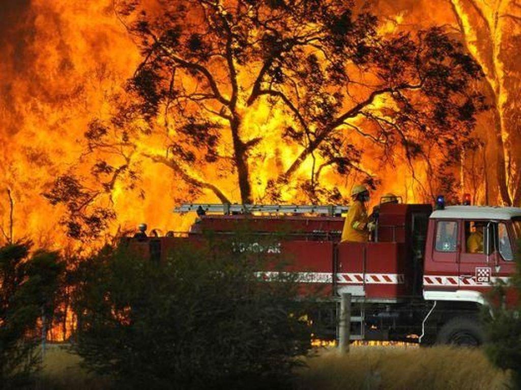 Indonesia Sampaikan Rasa Duka dan Siap Bantu Tanggulangi Kebakaran Australia