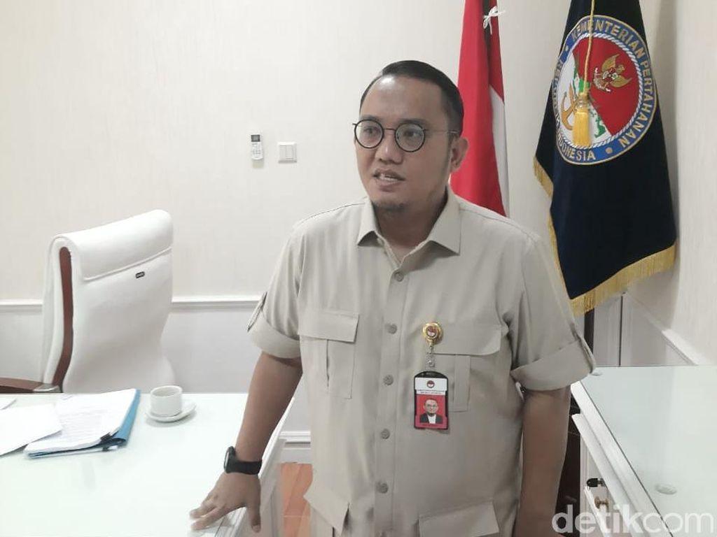 Pernyataan Cool Dianggap Tak Tegas, Dahnil: Prabowo Politisi Sekaligus Prajurit