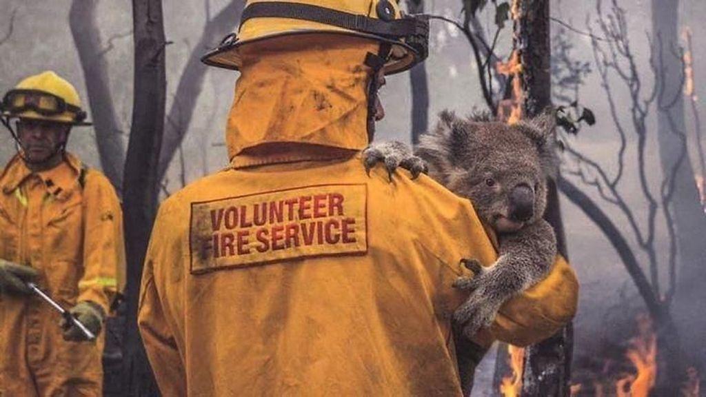 Potret Viral Kebakaran Australia yang Ngeri dan Mengharukan