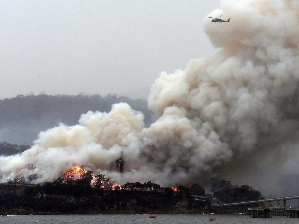 Awan Asap Kebakaran Hutan Australia Terlihat Hingga Chile dan Argentina