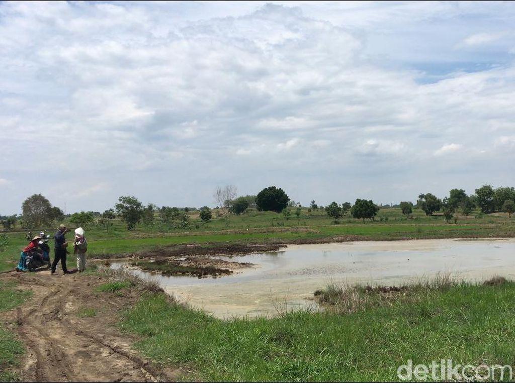 Ada 10 Titik Sumber Keluarkan Air Asin Bercampur Minyak di Sawah Mojokerto