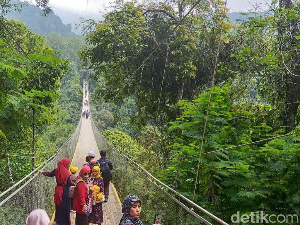 Gunung Gede Pangrango Bagian Sukabumi Tiadakan Kemping hingga Akhir Pekan