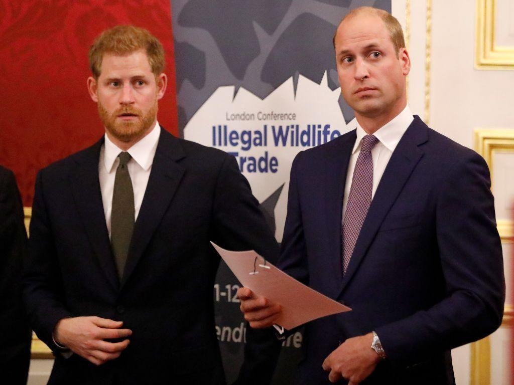 Pakar Sebut Pangeran William dan Harry Bisa Akur Kalau Bercerai