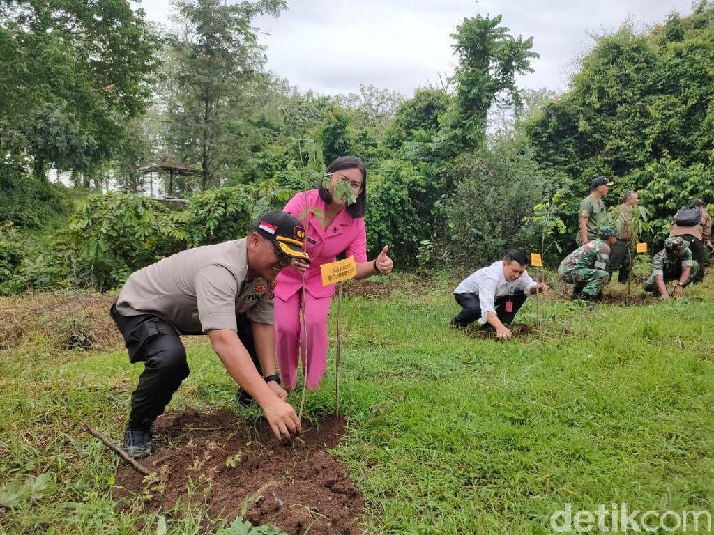 Saat Hutan Gundul di Bojonegoro Dihijaukan Kembali