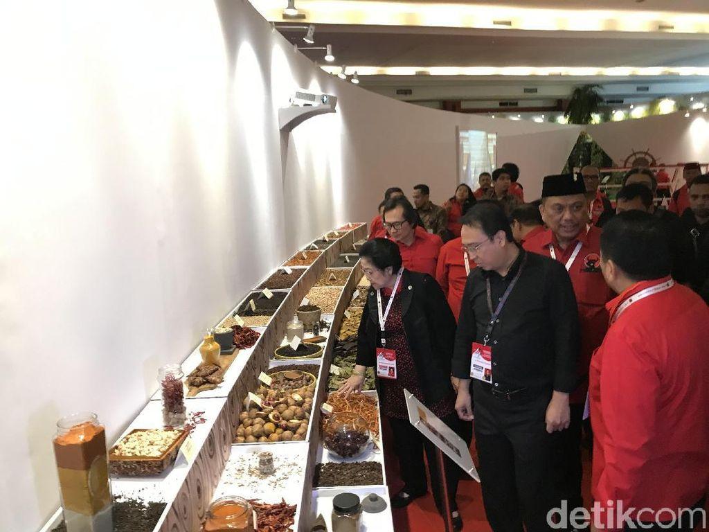 Megawati hingga Hasto Tinjau Pameran Rempah di Area Rakernas I PDIP