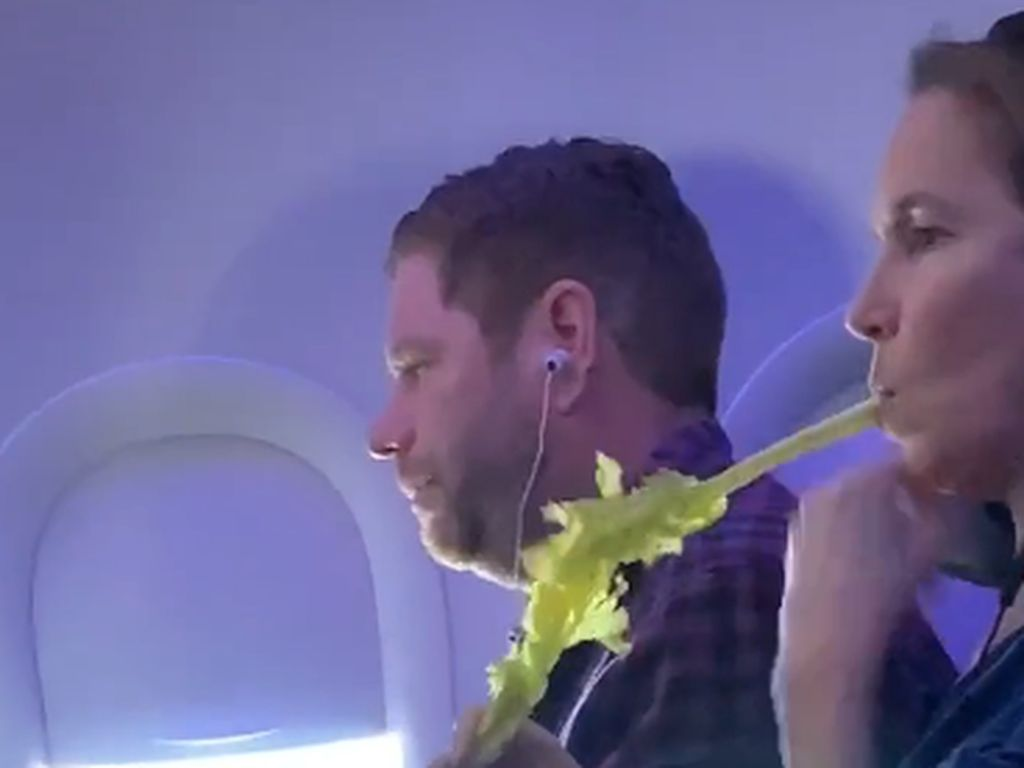 Aksi Ngemil Sayur di Kursi Pesawat Jadi Viral, Kayak Apa Sih?