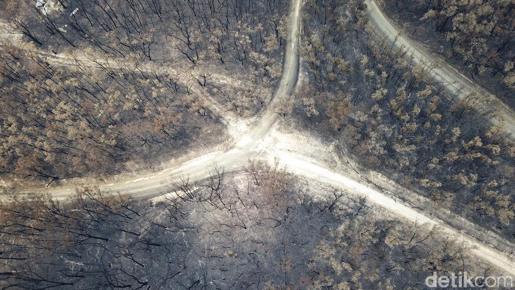 Potret dari Udara Sisa Kebakaran Hutan di Australia