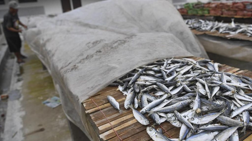 Produksi Ikan Asin Turun Imbas Musim Hujan