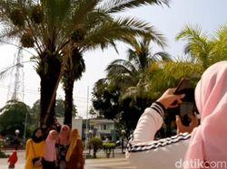 Masyaallah, Pohon Kurma di Masjid Agung Tasik Berbuah Lebat