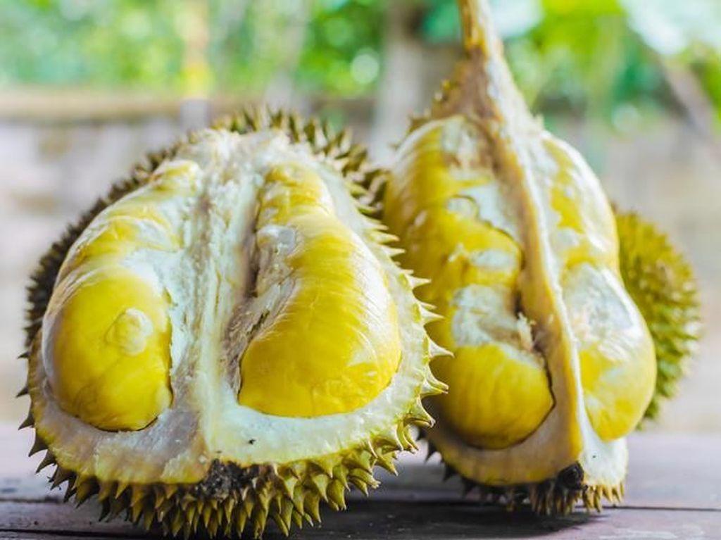 Durian Termahal di Dunia Hingga Chef Kembalikan Bintang Michellin