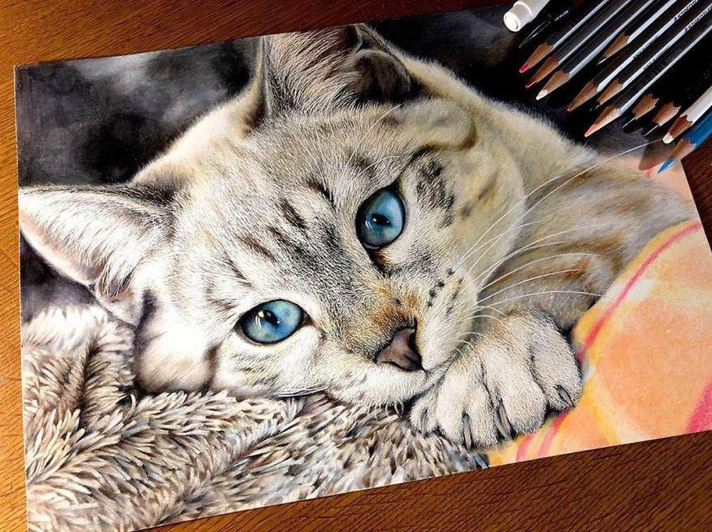 Kucing Rumahan di Britania Raya Pun Tak Lepas dari Jeratan Corona