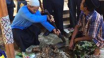 Video Makam di Kontrakan Raja-Ratu Keraton Agung Sejagat Dibongkar!