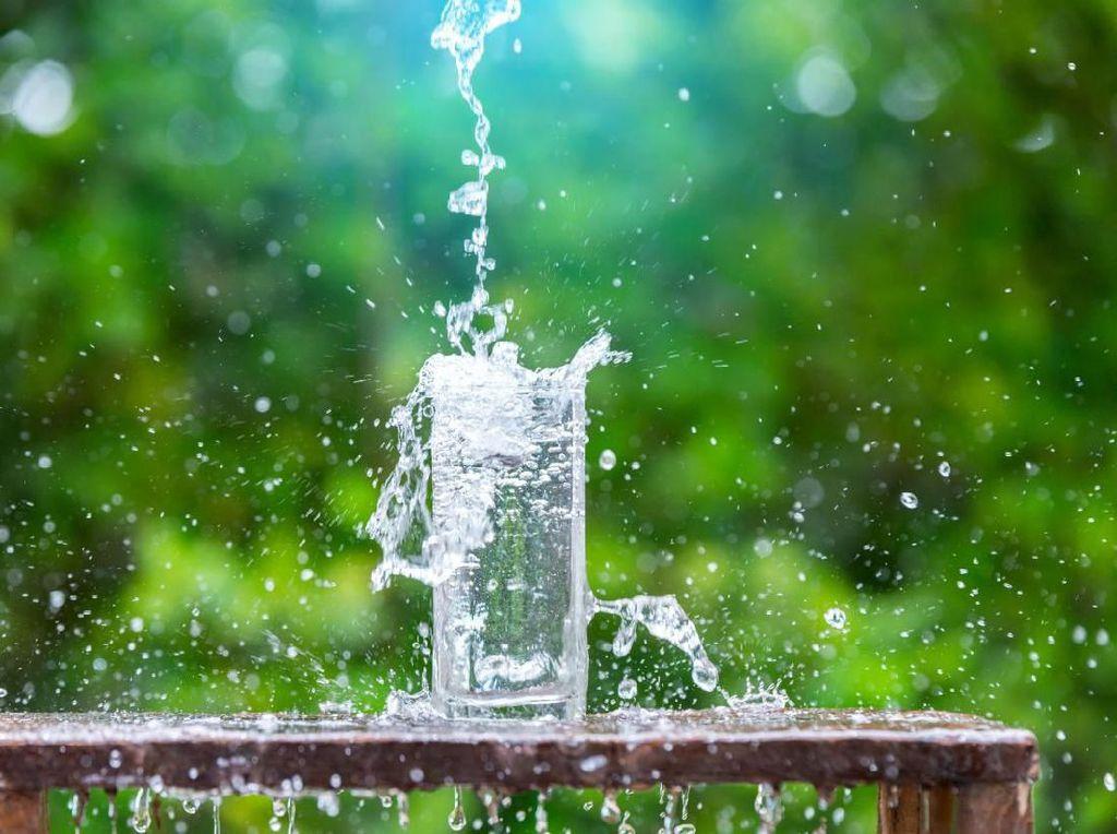 Tiap Hari Cairan Tubuh Hilang 1.900 ml, Ini Pentingnya Minum Air