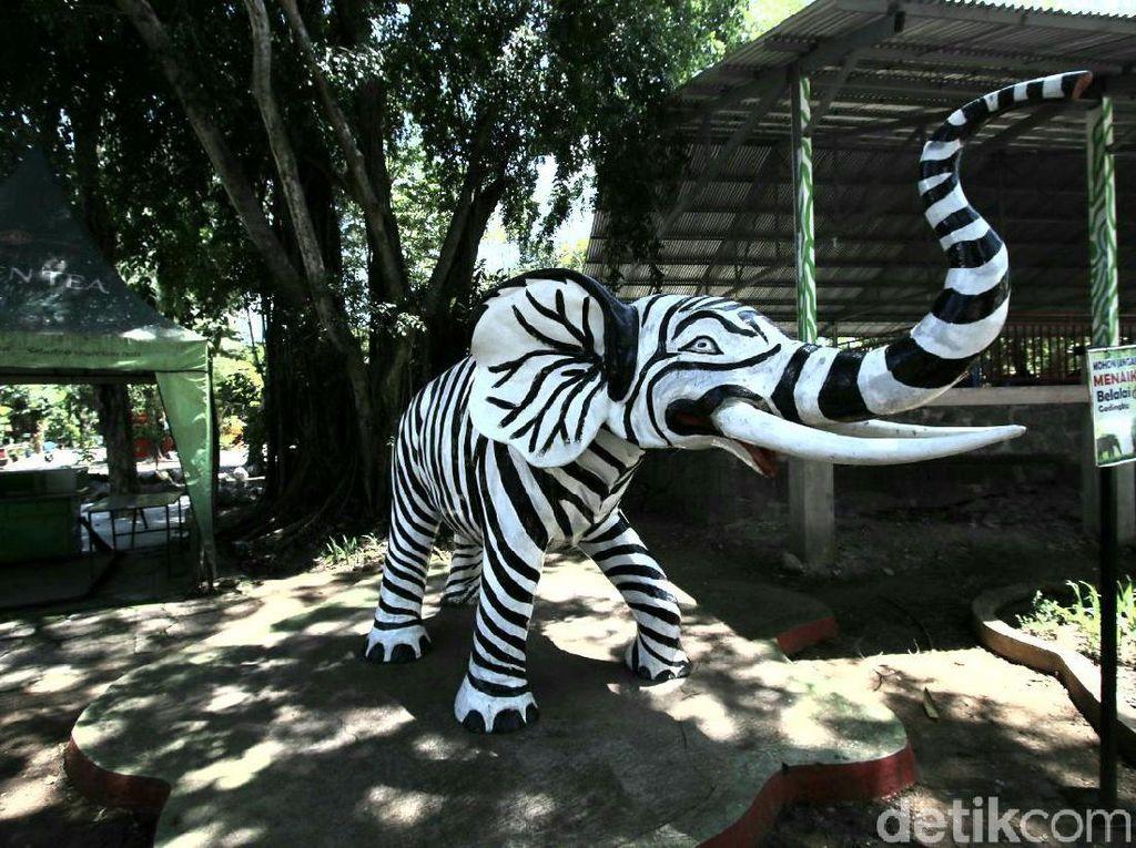 Tiket Solo Zoo Bisa Dibeli Sekarang Untuk Dipakai Liburan Usai Pandemi