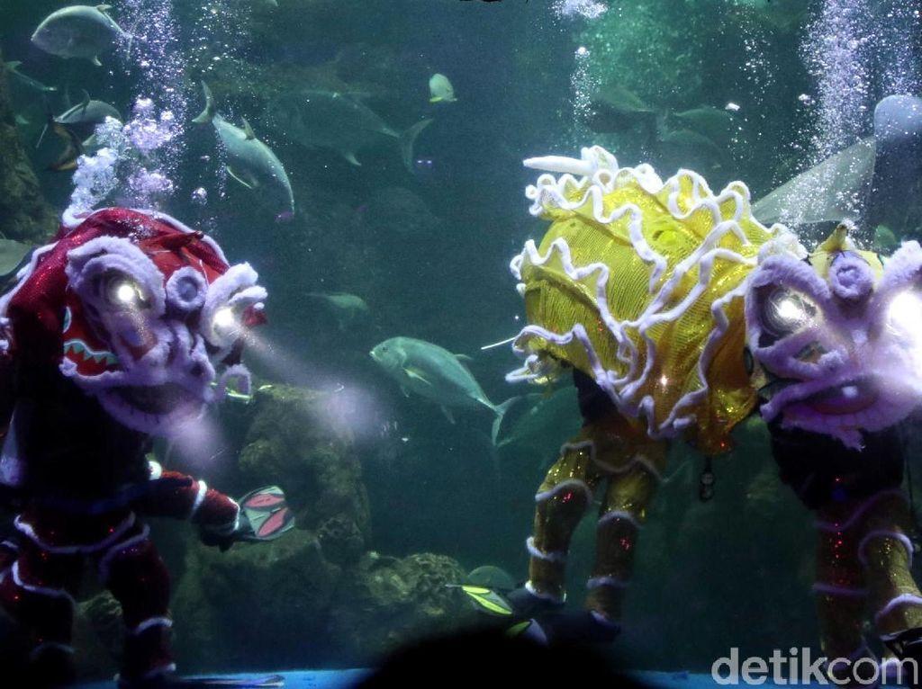 SeaWorld Ancol Singgung Isu Banjir di Perayaan Imlek Tahun Ini